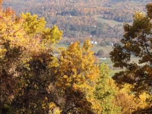 Fall foliage, Blue Ridge Parkway