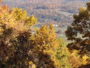 Fall foliage, Blue Ridge Parkway