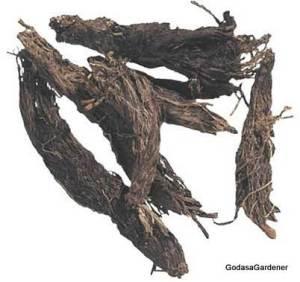 Spikenard roots (Primrose Laboratories)