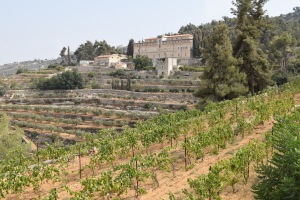 This September 2015 photo shows the Cremisan Monastery and vineyards in Bethlehem. The winery uses local grapes to make fine wines at the site of an ancient church and also hosts tours. Local Palestinian Christians and Muslims work together in the vineyards. (Kevin Begos via AP)